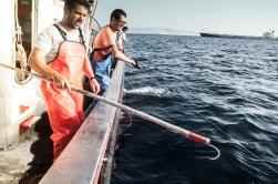 Un vez se acerca a superficie , el resto de la tripulación se prepara para embuchar y subir a cubierta.