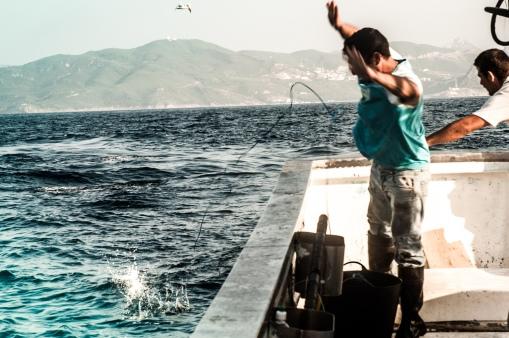 Estos pescadores de atún sacan uno a uno estos peces, que pueden llegar a pesar más de 100kilos.