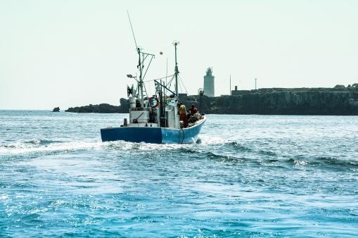Puerto de tarifa, Cádiz