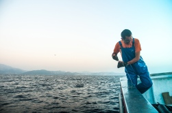 es una faena donde hay que entender los movimientos del pez, antes de intentar tirar bruscamente del cordel.
