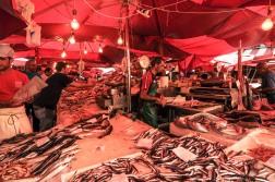peces, color de Mercado. foto @anamariamarrero