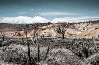 Paisajes de Coche foto @anamariamarrero